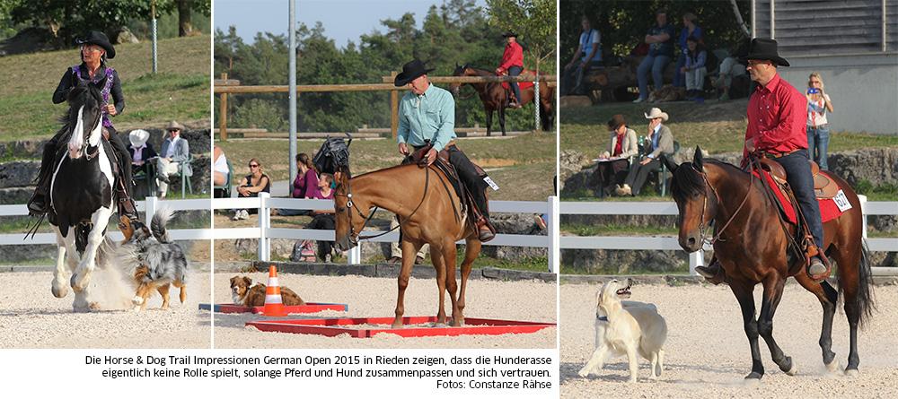 Hund und Pferd müssen sich vertrauen