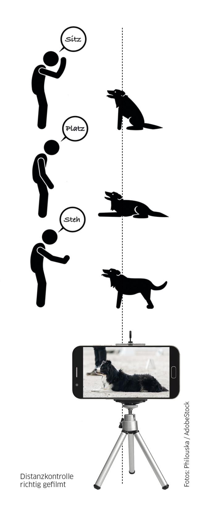 Kameraposition für Distanzkontrolle im Obedience